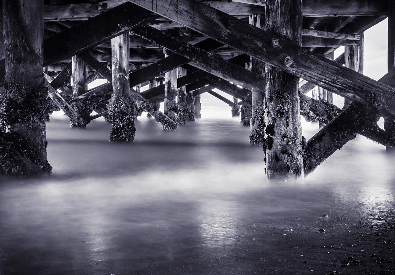 Under the Wharf