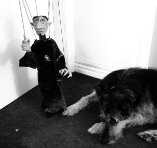 Completed puppet, scaring dog