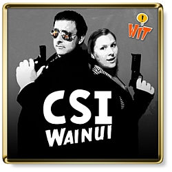 Show Logo for CSI Wainui