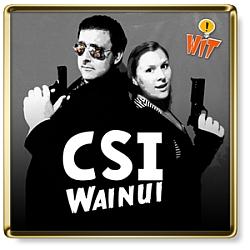 Show Logo for CSI Wainui