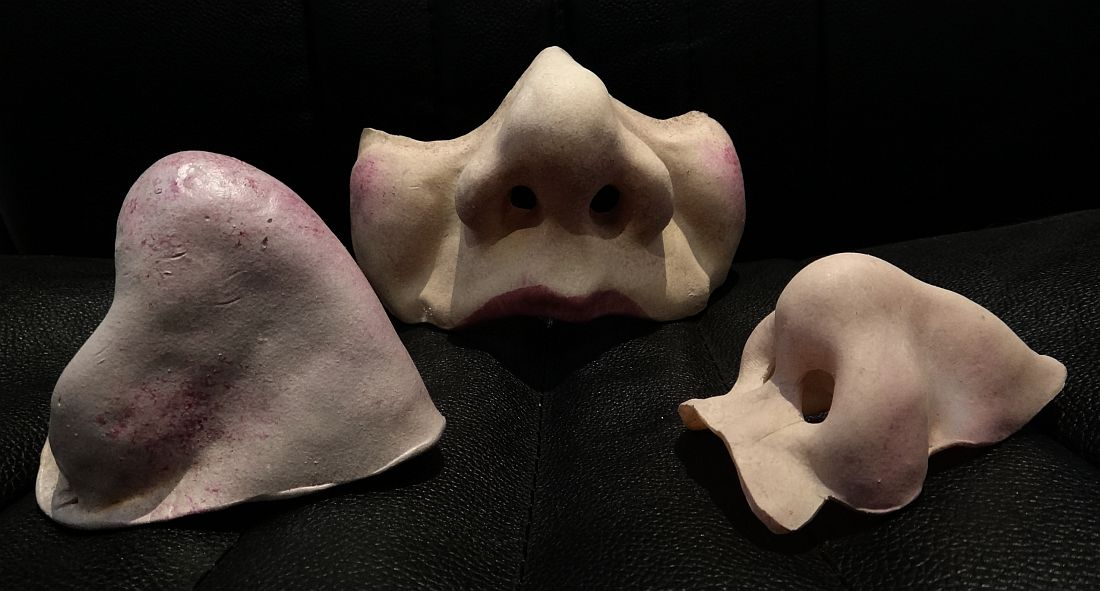 noses and half mask