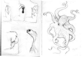 ocotopus tattoo