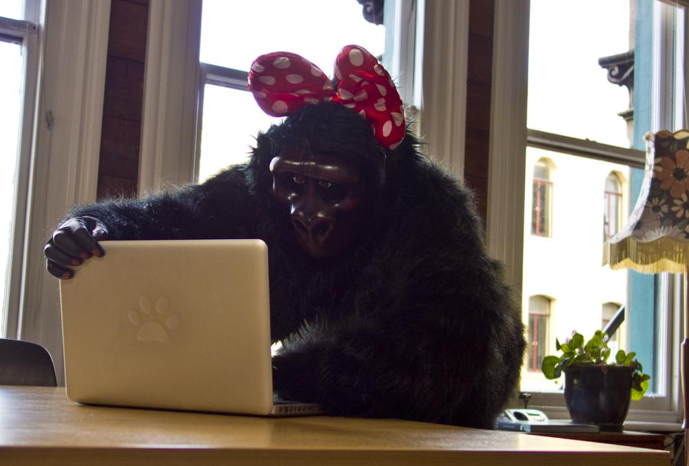Gorilla using a computer