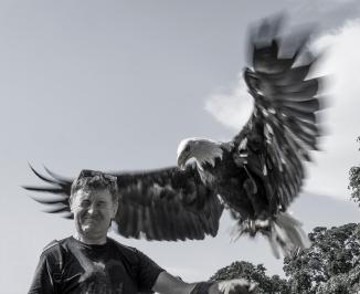 Eagle!