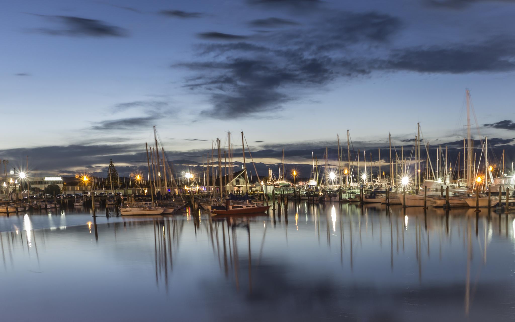 Napier marina