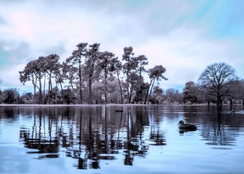 Christchurch lake